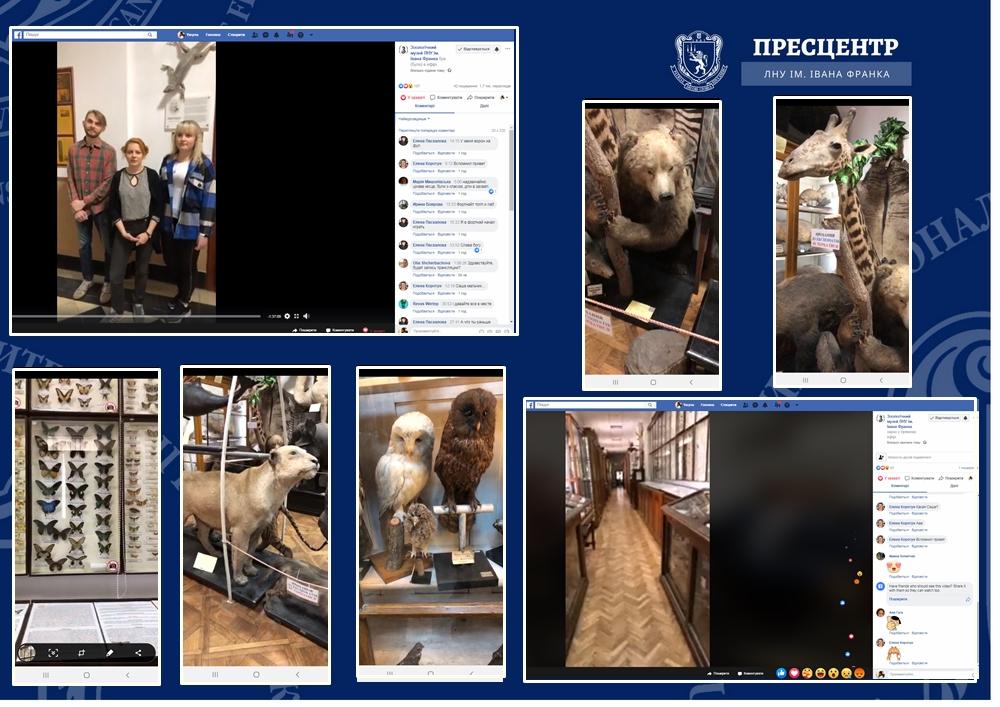 Від морських губок до ссавців: в Зоологічному музеї ЛНУ ім. Івана Франка відбулася онлайн-екскурсія